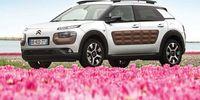 PROV: Citroën C4 Cactus sticker ut