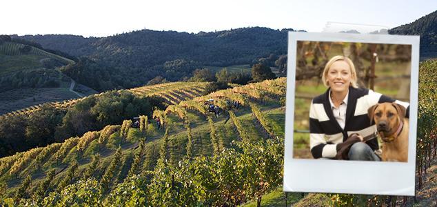 Kaliforniens bästa vingårdar